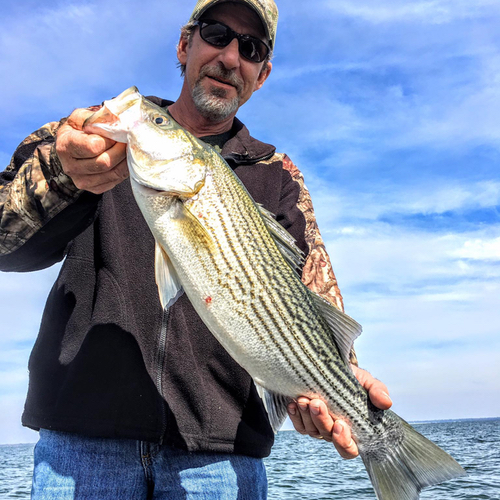 Atblogpic3 10 25 17 lake tawakoni guide for Lake tawakoni fishing guides