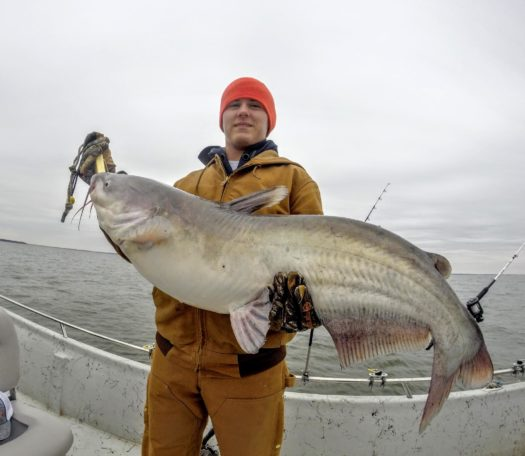 Picturesofbigbluecatfish 27 lake tawakoni guide for Lake tawakoni fishing guides