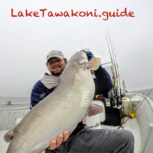 Lake Tawakoni Catfish